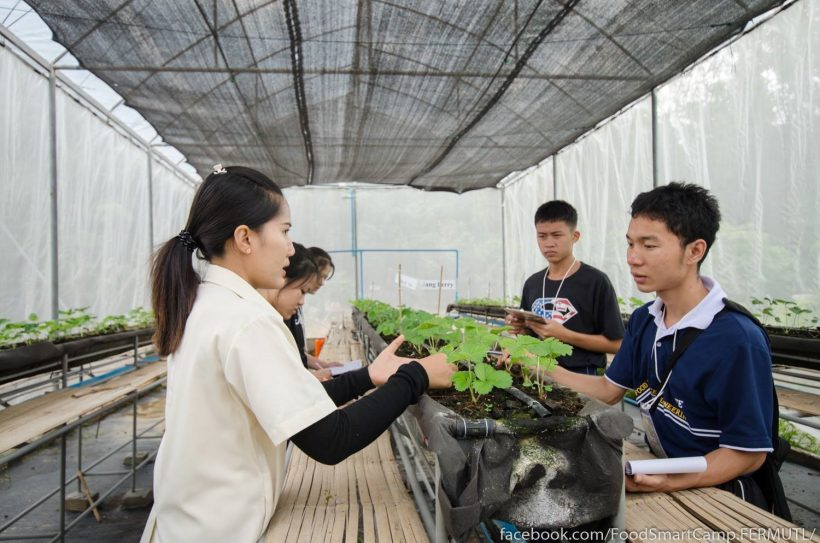 Food Smart Camp @โรงงานหลวงฯ ที่ ๑ (ฝาง) ครั้งที่ ๒