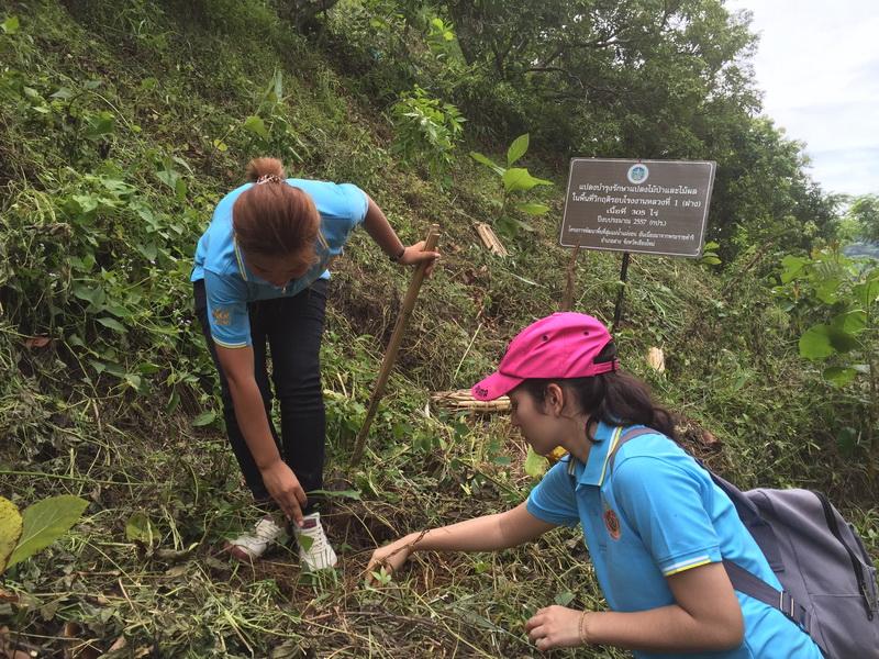 ดอยคำอาสา ปลูกป่าเพิ่มพื้นที่สีเขียว และบริการน้ำผลไม้แก่ประชาชนที่มาร่วมงานวันแม่แห่งชาติ