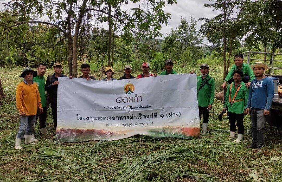 ดอยคำ ชวนชุมชนรอบโรงงานหลวงฯ สานต่อศาสตร์พระราชา รัก(ษ์) ผืนป่าด้วยหัวใจ